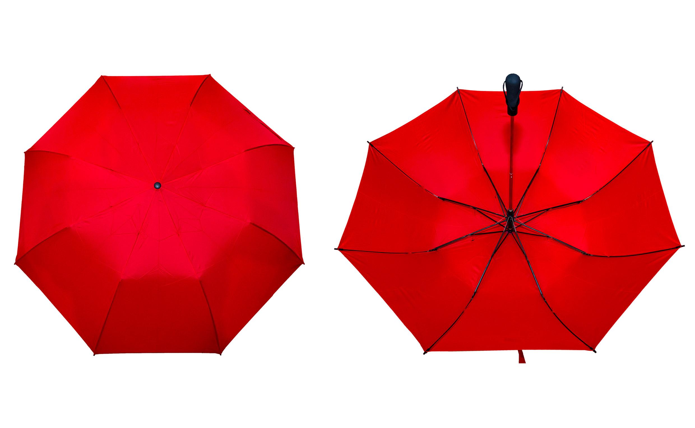 Two Fold Auto Umbrella Printing (UM12)